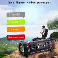 Outdoor Hifi Bluetooth Speaker FM Radio Move KTV 3D Sound System Sound Bar Subwoofer Column Bluetooth Speaker FM Radio