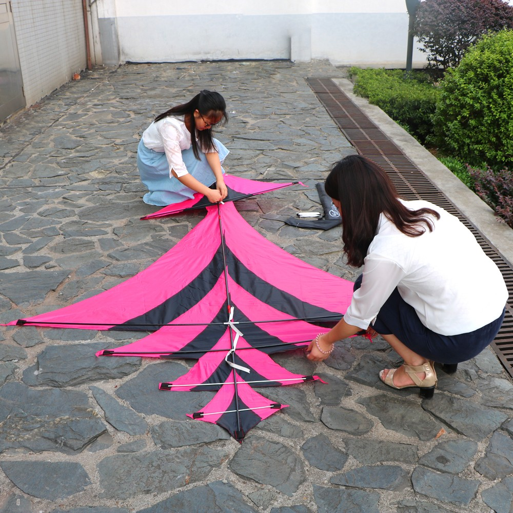 New Style Kite Flying Outdoor Sports with Kite Accessories Sturdy Pure Hand-Made Carbon Kites 3 Meters Long with kite handle