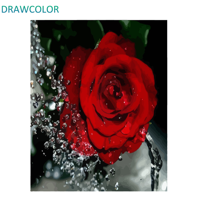 Drawcolor Frame Red Rose Diy Painting By Numbers Flower Acrylic Paint On Canvas Modern Wall Art Calligraphy 40x50cm