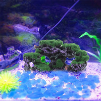 Simulation Moss Coral Reef Coral Decoration Imitation Of Sea Stone