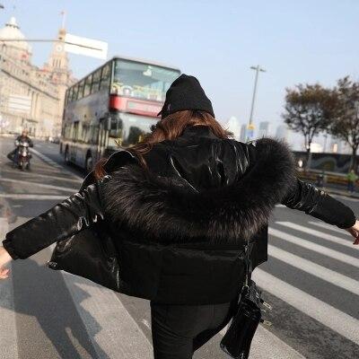 Blanc Veste Duvet Naturel Black Des Le St153 2018 Mode Raton Laveur blue De Ayunsue Femme Mujer Fourrure Capuche Mince Abrigo Femmes Nouvelle Bas Vers Courte Manteaux Canard qUHnwCv