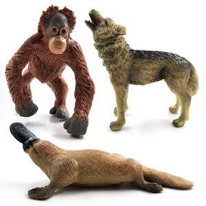 Image 4 - Đà điểu Meerkat Okapi Thiên Nga Wolf Cá Sấu Thú Mỏ Vịt Hươu Pig mô hình động vật hình bức tượng trang trí nội thất trang trí phụ kiện đồ chơi
