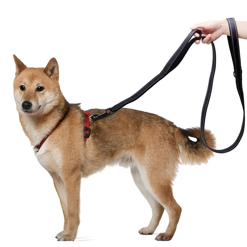 1.5m Nylon Dog Leash with Traffic Padded Handle Heavy Duty Two Handle Pet Leads Safety Training Leash for Large Dogs Reflective