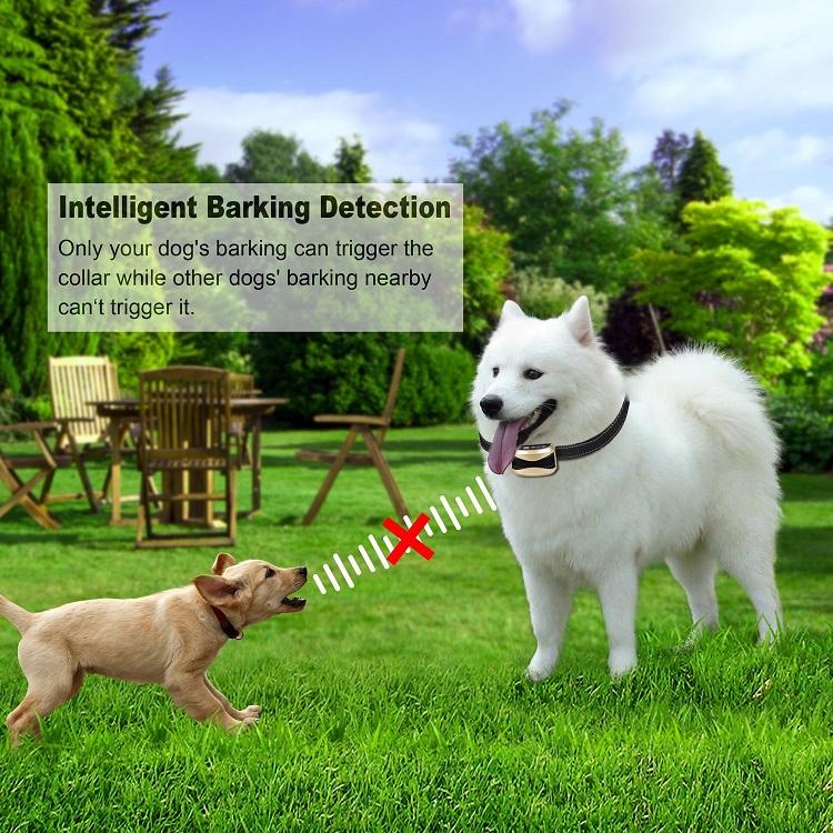2017-Newest-Dog-Electric-Shock-Training-Collar (3)