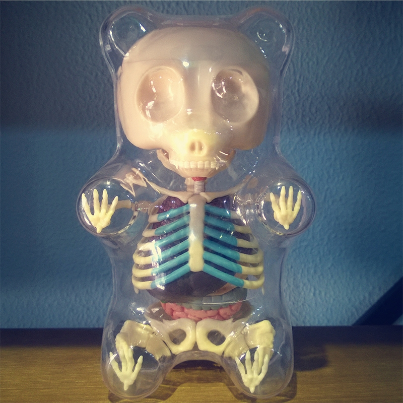 4DMaster Funny Anatomical Sculptures Gummi Bear Anatomy by Jason ...