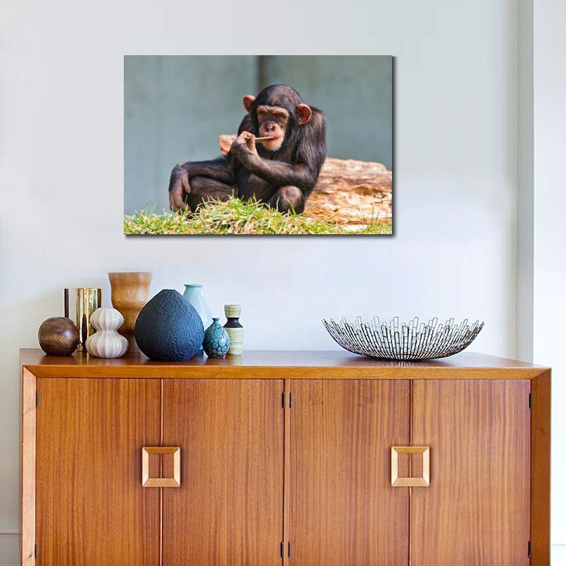 Moderne Poster Tiere Schimpanse Essen Leinwand Drucke Wand Affe Kunstdrucke Fr Wohnzimmer Kein Rahmen