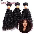 Brasileño rizado rizado pelo de la virgen 3 unids lote afro rizado curly hair bundles deal 300 g/lote enredo del pelo humano libre perfect extension