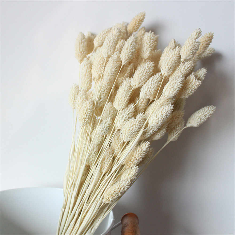 20Pcs Dried Natural Flower Bouquets Colorful Lagurus Ovatus Bouquets Uraria Picta Rabbit Tail Grass Bouquets Bunches