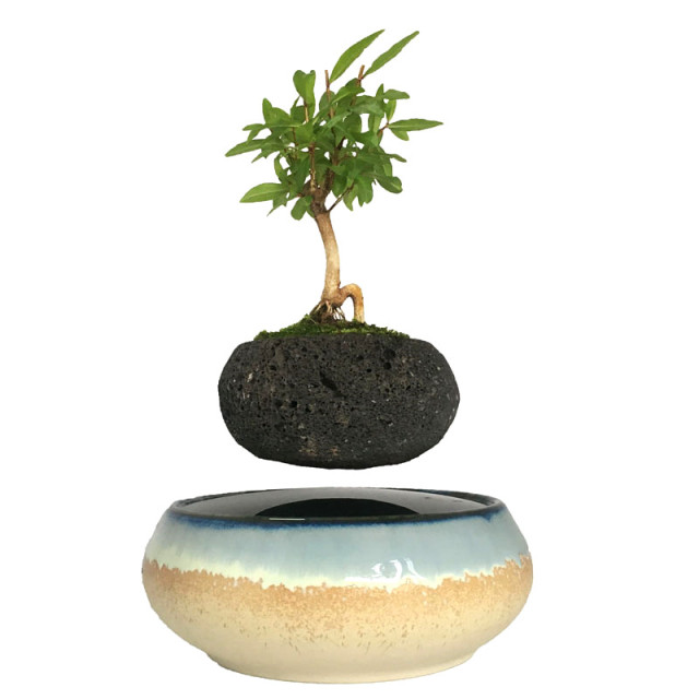 2017 japan magnetic levitation Floating Flowers Ceramic Flower Pot Bonsai  Art Birthday gift for men free