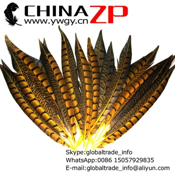 CHINAZP Factory Cheap Wholesale 200pcs/lot Size 12~14inch(30~35cm) Dyed Yellow Lady Amherst Pheasant Tail Feathers