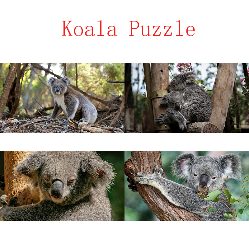 DDWE 1000 Pieces Adult Puzzle Australian Koala Animals Kids Kindergarten Jigsaw Puzzles Early Educational Game Toys For Children