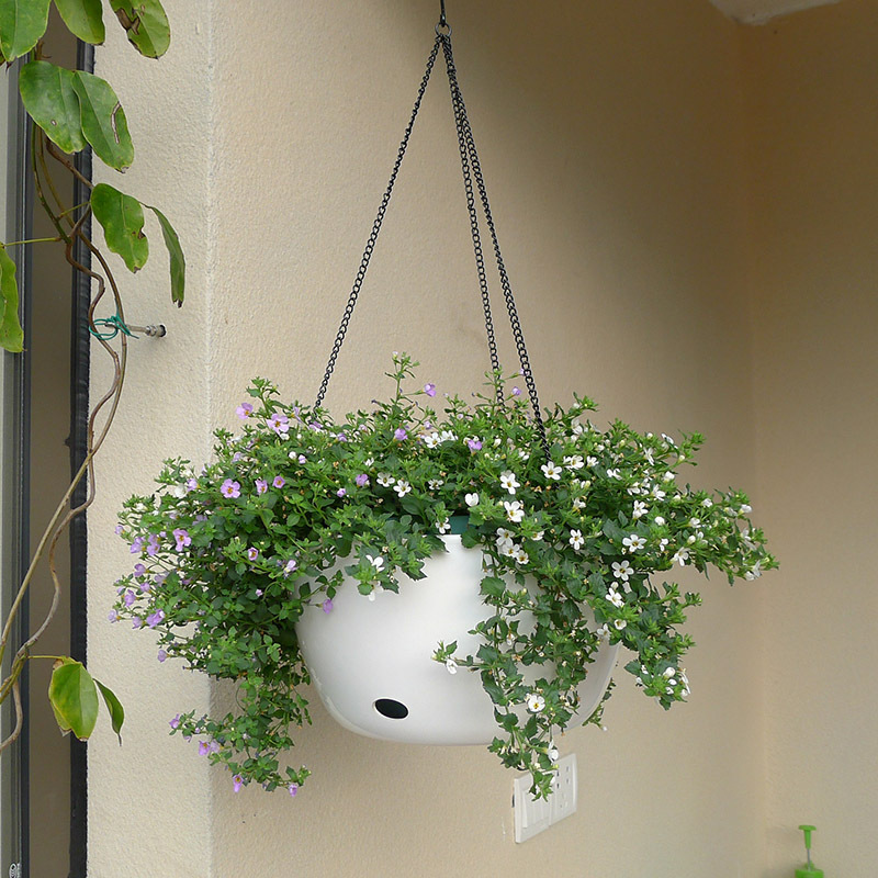 Plastic Hanging Basket Flower Pot Holder With Chain Succulent Plants Vase Round Shape Colorful Gardening Potted Home Decoration-in Flower Pots & Planters from Home & Garden