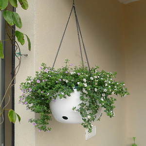 Image 1 - Plastic Hanging Basket Flower Pot Holder With Chain Succulent Plants Vase Round Shape Colorful Gardening Potted Home Decoration