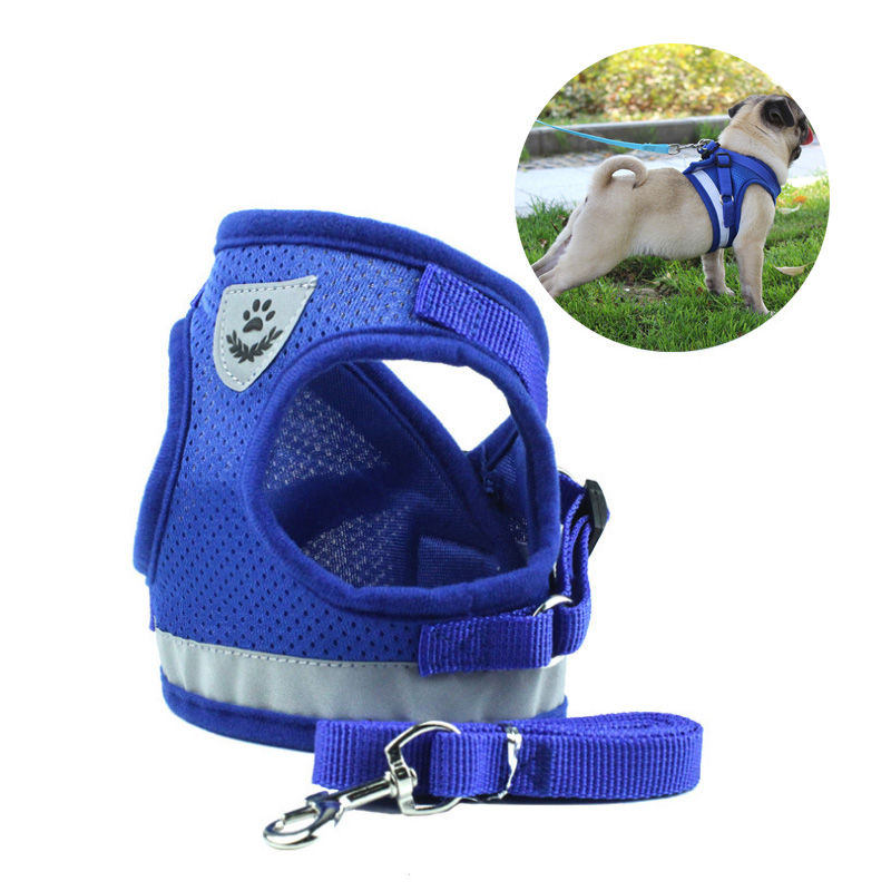Adjustable Dog Harness Nylon Breathable Leash For Small Dogs Pet Vest Rope Walk Out Lead Set Puppy Cat Accessories Doggyzatyle Home & Garden