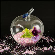 Ultra – American creative transparent glass apple vase micro – landscape flowers fashion home jewelry crafts