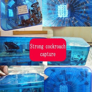 Image 3 - 効率的な再利用可能なゴキブリ害虫トラップ餌非毒性エコゴキブリバグキャッチャーキャッチ害虫キラートラップリペラー