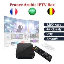 Android TV Box s905 + Francuski Arabski iptv Box z 1 Roku 1200 + Belgia francja kod Na Żywo TV & VOD IPTV obejmuje inteligentne pole tv