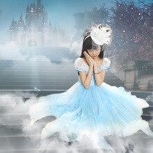 Девушки Принцесса Лето Золушка Пушистый Платье Детская Одежда Розовый Синий
