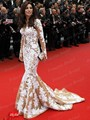 Discount Najwa Karam In Cannes Red Carpet Dresses Mermaid Lace Appliqued Long Sleeves Celebrity Dress Free Shipping EN222