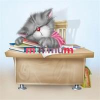 High Quality Home Decor Gift Diamond Painting DIY 5D Cartoon Cat Cross Stitch Kits Diamond Embroidery