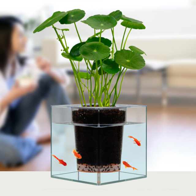 Creative Clear Tube Plant Pot / Flower Pot Decorative Self-Watering Planter Fish Tank for Home Office Desk Free Shipping