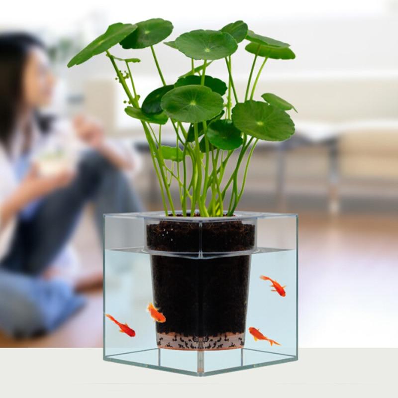Keybox Creative Clear Tube Plant Pot Flower Pot
