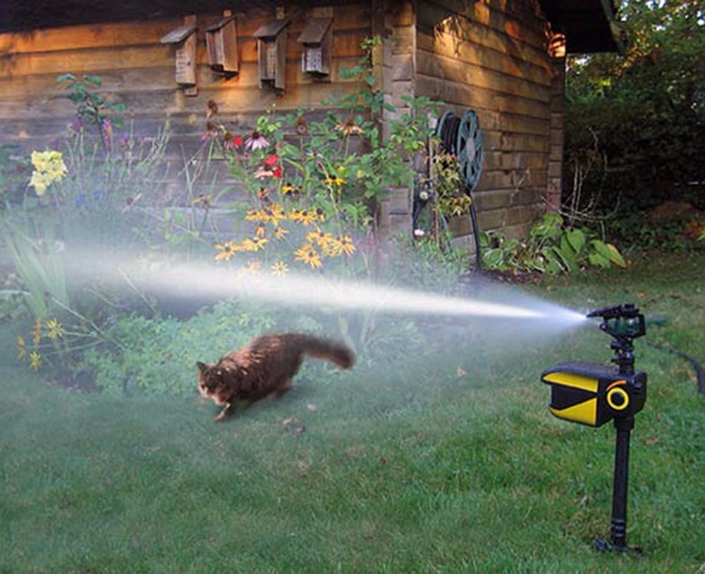 Image 5 - Newest Outdoor Water Blaster Animal Pest Repeller   Motion Activated   Blasts Dogs, Cats, Squirrels, Deer etc Solar power-in Repellents from Home & Garden