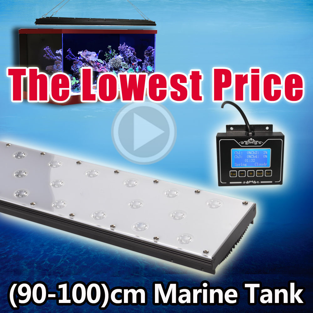 Fish tank light timer - Programmable Timer Led Saltwater Aquarium Fish Tank Marine Coral Reef Grow Light 36