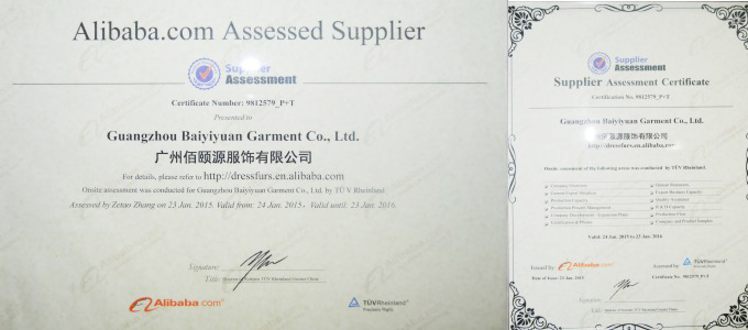 BV certification by Alibaba.jpg