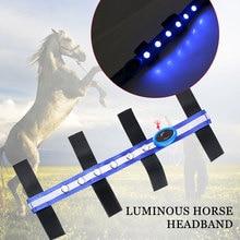 Конский головной ремень светодиодный Конный поводок практичный синий полиэстер всадник Спорт на открытом воздухе