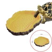 Reptile Tortoise Water Dish Food Bowl Toy For Amphibians Gecko Snakes Lizard Feeding Dish #6281(China)
