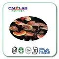 Горячий продавать 200 г/лот Ganoderma Lucidum/гриб рейши полисахарид 40% экстракт гриба рейши порошок