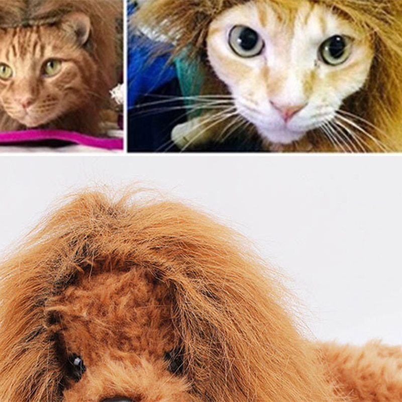 Cute Pet Cosplay Clothes Transfiguration Costume Lion Mane Winter Warm Wig Cat large Dog Party Decoration With Ear Pet Apparel6