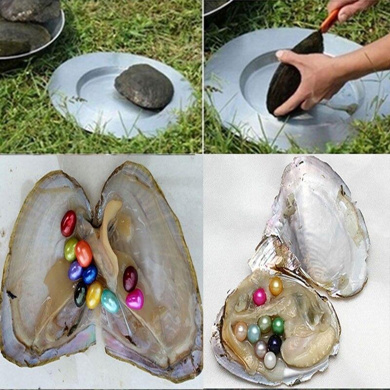 10/20 шт Oysters жемчуг пресноводный натуральный круглый бисер муссель подарки на день рождения индивидуальная упаковка смешанный 20 цветов случ...