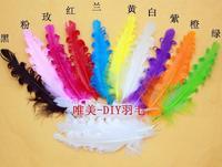Livraison gratuite 100 pcs 10 - 15 cm / 4-6in bricolage teints mélange de couleur vraie naturel bouclés Plumes d'oie Plumes Extensions de cheveux