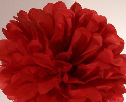 Govaz Wedding Decoration Events Accessories 20 25 30cm Pom Pom Tissue Paper Pompom Ball Party Supplies Baby Shower Birthday