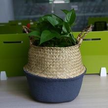 Buy  ase Container Home Storage Garden Supplies  online