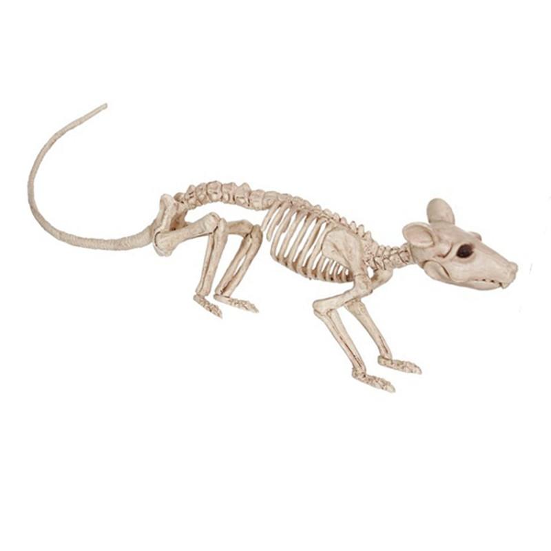 NorCWulT Halloween Rat Squelette en Plastique Os du Squelette Animal Simulative Squelette D/écoration pour Halloween Horror D/écoration