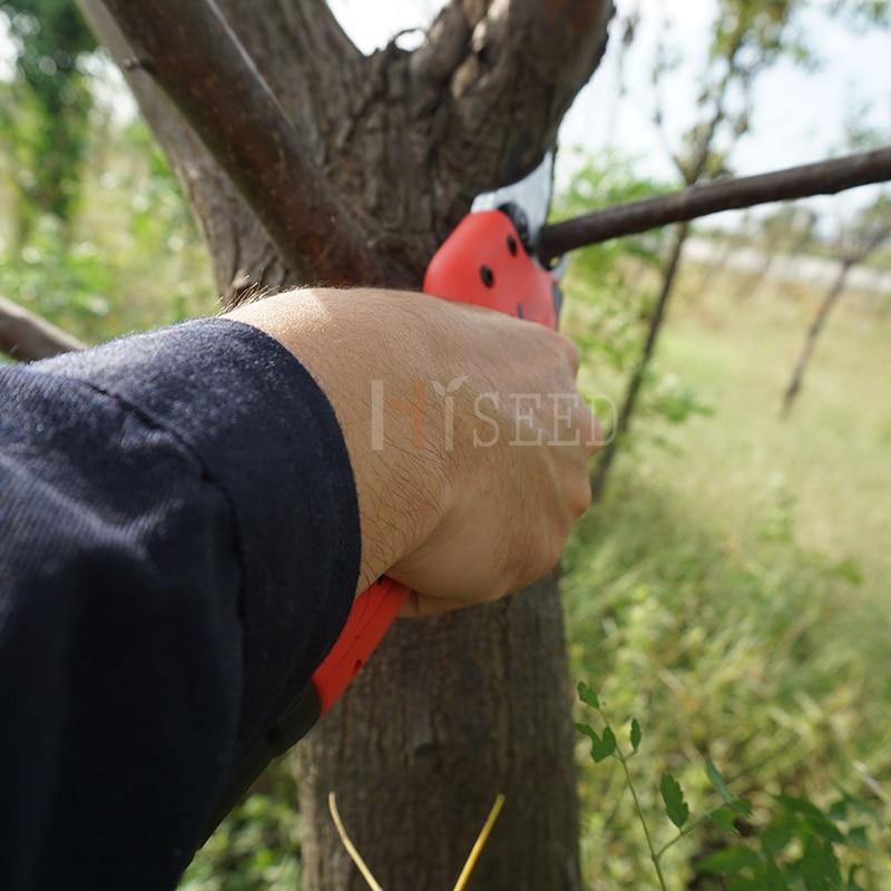 Австралия Евро и САЩ стандартна - Градински инструменти - Снимка 4