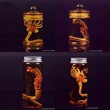Predator Alien larwa Bug twarzy + szklana butelka ogień dziewczyna zabawki Chestburster Facehugger kultura zbiornik