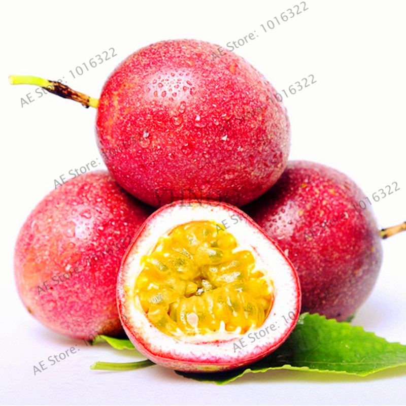 20pcs/bag Purple Passion Fruit(Passiflora Edulis)bonsai,Rare Tropical Edible Fruit  Organic Fruit Tree Garden For Indoor Plant