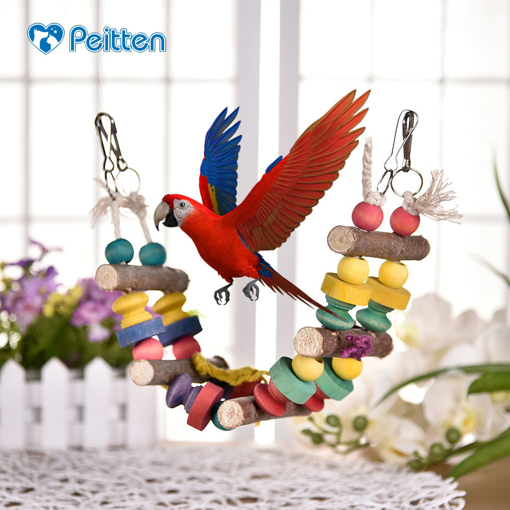 Colorful Chewing Hanging Toys Bird Cage Parrot Squirrel Swing Toy ...