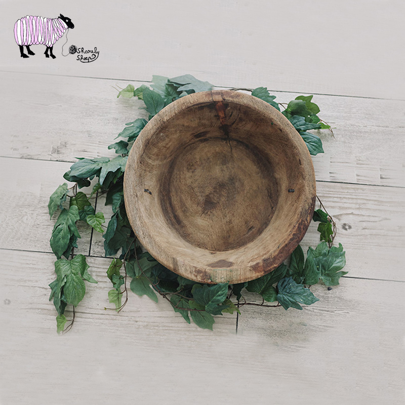 Newborn Photography Artificial Plant Props Infant Fotografia Shooting Accessories Baby Girl Boy Photo Shoot Basket Accessories