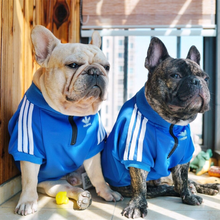 Одежда для собак Adidog, французская футболка с бульдогом, свитер для собак, спортивная ретро рубашка для чихуахуа, кошки, одежда для домашних животных, Ropa Perro Puppy Dog Pugs