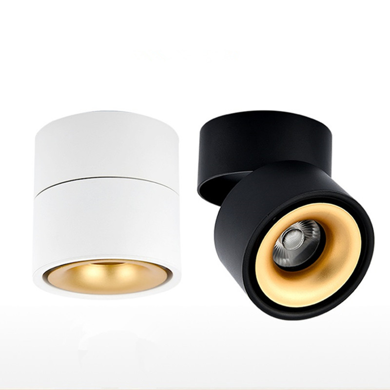 Surface Mounted 10W LED downlight LED Ceiling Lamps cob led spot lights Warm Cold White Led Ceiling Fixtures Lighting