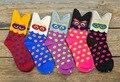 Puntos coloridos calcetines de invierno primavera buho de la historieta de las mujeres 3D encantadores lindo calcetines Meias marca de la buena calidad de algodón suave y cómodo