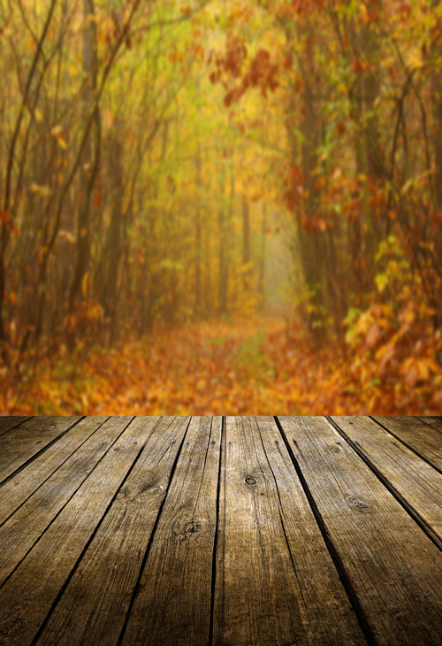 huayi fall photography wood floor backdrop autumn background xt4722