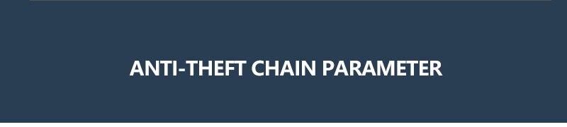 anti-theft chain 1