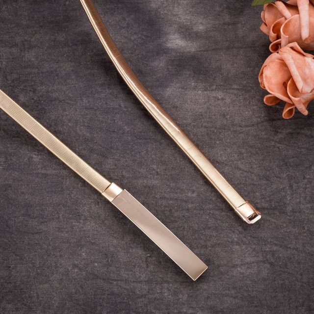 Metal Plate Belts Women...