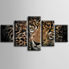 Wholesale 5 pieces / set of Animal leopard wall art for decorating home Decorative painting on canvas framed/ZT-3-22